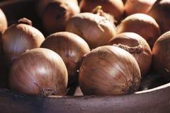 Many onion bulbs raw cuisine tasty delicious golden vegan rich aroma sweet Stock Photos