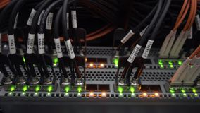 Many optical patchcards in the data center server room. Telecommunications cables stock video footage