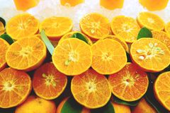 Many orange fruits cuts in half to show the freshness stock photo