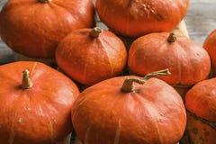 Many orange pumpkins as background, closeup. Autumn holidays stock photography