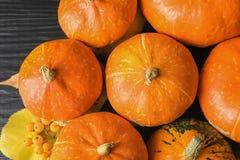 Many orange pumpkins as background, closeup. Autumn holidays royalty free stock images