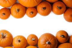 Many orange pumpkins. Frame isolated on white background, autumn harvest, Halloween or Thanksgiving concept royalty free stock photos