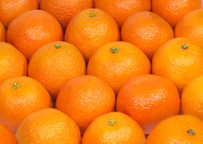 Many orange tangerines as background Stock Image