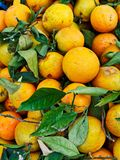 Oranges For Sale at Greek Street market. Many oranges with green leaves and blemished skin, ugly fruit, for sale at a weekly Greek fresh fruit and vegetable royalty free stock images