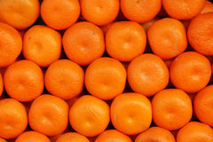 Many oranges isolated in one place Royalty Free Stock Photography