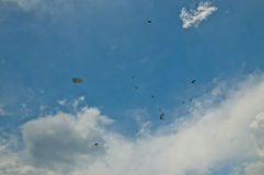 Many paratroopers dropped on the battlefield Stock Image