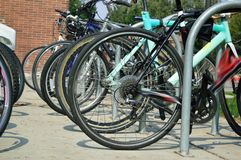 Many Parked Bicycles on campus back to school royalty free stock photo