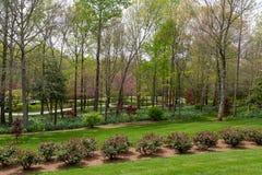 Many Paths Through Rose Garden Stock Photo