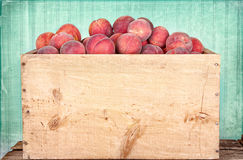Many peaches in wooden crate. With antique panel background Stock Images