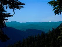Many Peaks. A view of the central Cascade Mountain range as seen from the Pacific Crest Trail in Washington State stock image