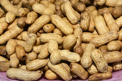 Many peanuts in shells. One upon the other Stock Images