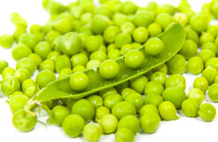 Many peas in a pod  grains Stock Images