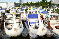 Many pedal boat. In the lake, vietnam stock photography