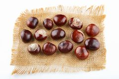 Many peeled chestnuts lie on hessian. Horse-chestnuts.  royalty free stock photos