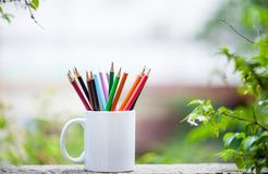 Many pencils are grouped together. stock image