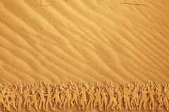 Many people dancing on the sand Royalty Free Stock Photography