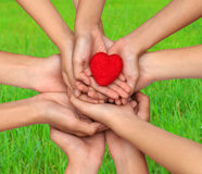 Many people hands holding a red heart.Hands holding a red heart. On blury green grss background love concept stock images