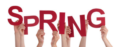Many People Hands Holding Red Word Spring Royalty Free Stock Image