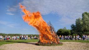 Many of people walk around bright fire in forest, clear sky in good spring weather, Summer festivities near bonfire stock footage