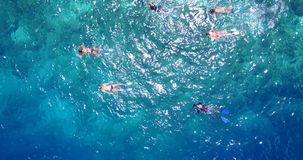 Many people young boys girls snorkeling over coral reef with drone aerial flying view in crystal clear aqua blue. Shallow water stock video