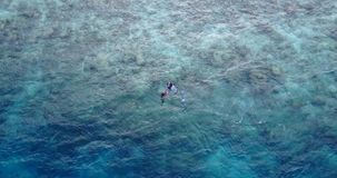 Many people young boys girls snorkeling over coral reef with drone aerial flying view in crystal clear aqua blue. Shallow water stock footage