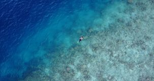 Many people young boys girls snorkeling over coral reef with drone aerial flying view in crystal clear aqua blue. Shallow water stock video footage