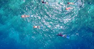 Many people young boys girls snorkeling over coral reef with drone aerial flying view in crystal clear aqua blue. Shallow water royalty free stock image
