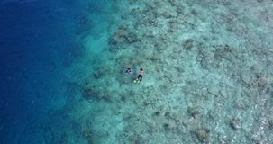 Many people young boys girls snorkeling over coral reef with drone aerial flying view in crystal clear aqua blue. Shallow water stock photo
