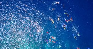 Many people young boys girls snorkeling over coral reef with drone aerial flying view in crystal clear aqua blue. Shallow water stock photography