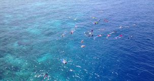 Many people young boys girls snorkeling over coral reef with drone aerial flying view in crystal clear aqua blue. Shallow water stock image