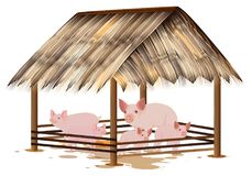 Many pig in corral. Design royalty free illustration