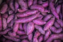 Many piles of purple sweet potato. royalty free stock photo