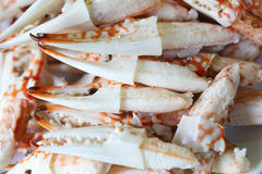 Many Pincers. Ready to eat Royalty Free Stock Photos