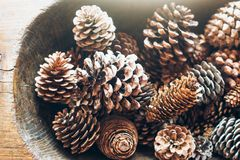 Many Pine Cones In Old Wooden Bowl On Table. Stock Photo