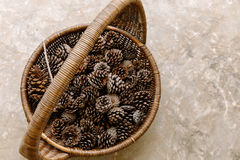 Many pine cones in a wicker basket boldly placed on the ground.  Stock Image