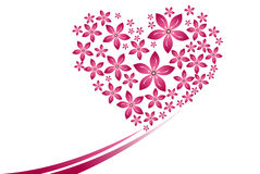 Many pink flower heart shape on the white background. Stock Images
