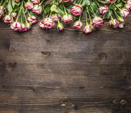 Many pink shrub roses, on the branches, laid out in a line  border ,place for text  wooden rustic background top view Stock Photo