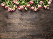 Many pink shrub roses, on the branches, laid out in a line  border ,place for text  wooden rustic background top view Stock Images