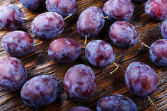 Many plums background Stock Photography