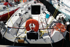 Many pogo sailboat Royalty Free Stock Photo