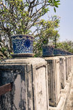 Many porcelain pot on pillar. With long perspective royalty free stock photos