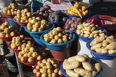 Many portions of potato Stock Photography