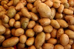 Many potatoes vegetable pattern background Royalty Free Stock Photo