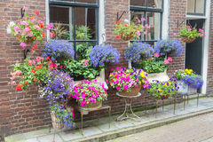 Free Many Pottery Flowers Hanging At Brick Wall Stock Photography - 52805592
