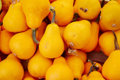 Many pumpkins in the fair Royalty Free Stock Photography