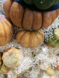 Many pumpkins on a farmers market. For cooking or ornamental royalty free stock photos