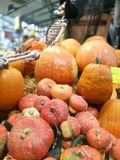 Many pumpkins on a farmers market stock images