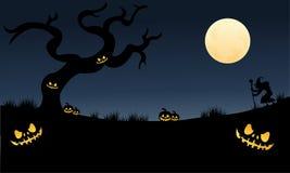 Many pumpkins halloween very scary. At the night Stock Photos