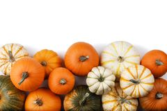 Many Pumpkins on white. Many orange pumpkins isolated on white background , Halloween concept royalty free stock photos