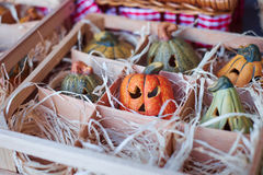 Many pumpkins on the wooden box Stock Images
